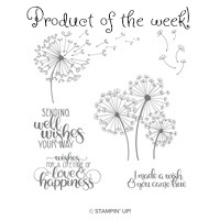 DW product of week